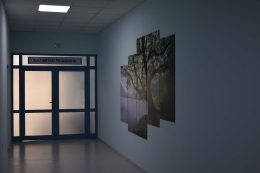 """С последно поколение ядрено-магнитен резонанс Университетска Болница """"Света Марина"""" – Плевен ще осигурява най-висок стандарт в образната диагностика"""